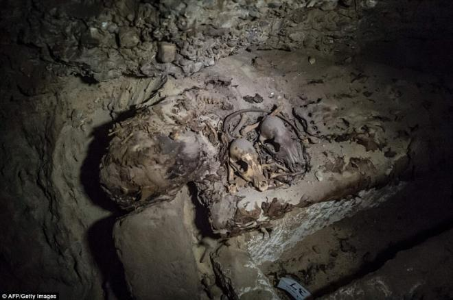 A mummy pictured with what appear to be animal remains inside the catacombs.