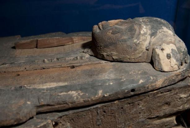 Photos de Ta-Iset, la momie de Rueil-Malmaison.