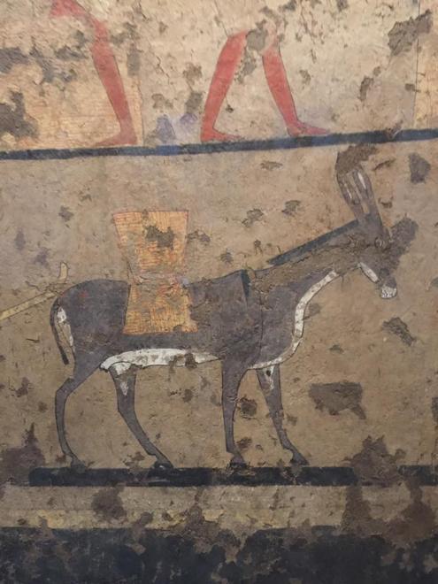 Museo Egizio di Torino.