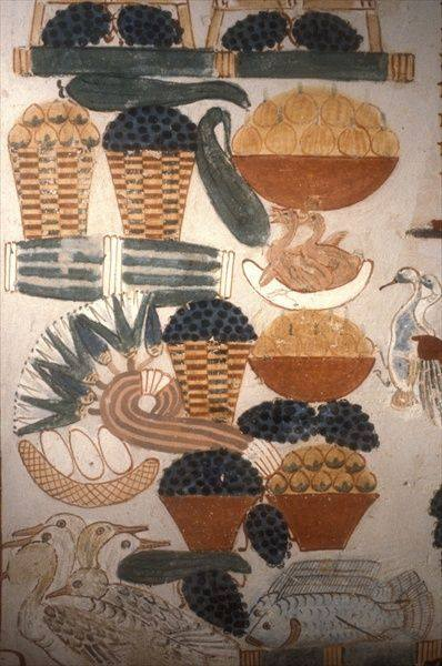 Fruit, fish and poultry, from the Tomb of Nakht, Sheikh Abd el-Qurna