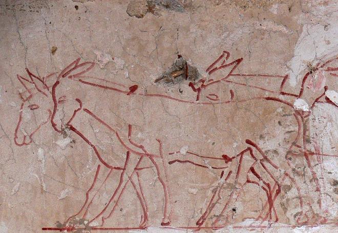 TT.101 (Sheikh Abd el-Gournah). Tombe de Tchanouro (majordome royal).Epoque : Amenhotep II. Détail. Les ânes.