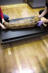 4923381 6 1859 installation de la momie ta iset au musee 7b66a2c07e4eaa74ea4e5bf66b3a3886