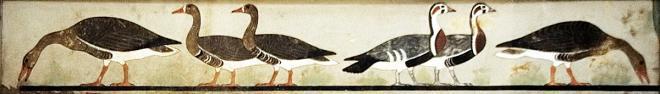 Cairomuseumgeese 98 1