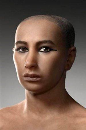 Conseil superieur des antiquites egyptiennes un portrait realise par une equipe francaise en 2006