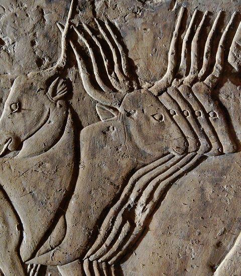 Kheruef s tomb