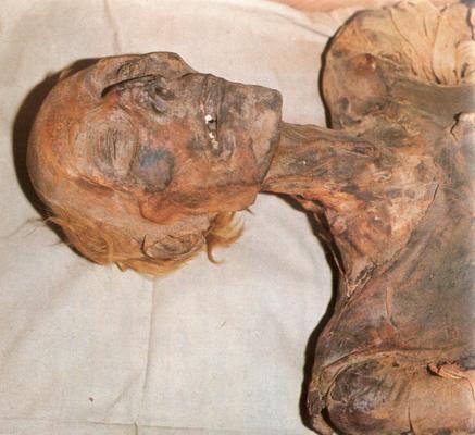 Ramses2 roux 1