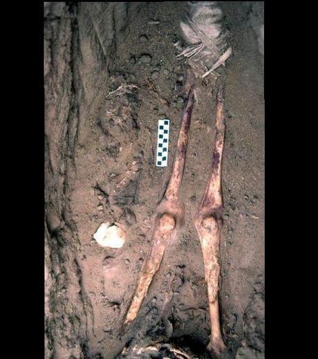 Sepulture d une mere et de son enfant datant de l egypte antique 59686 w460