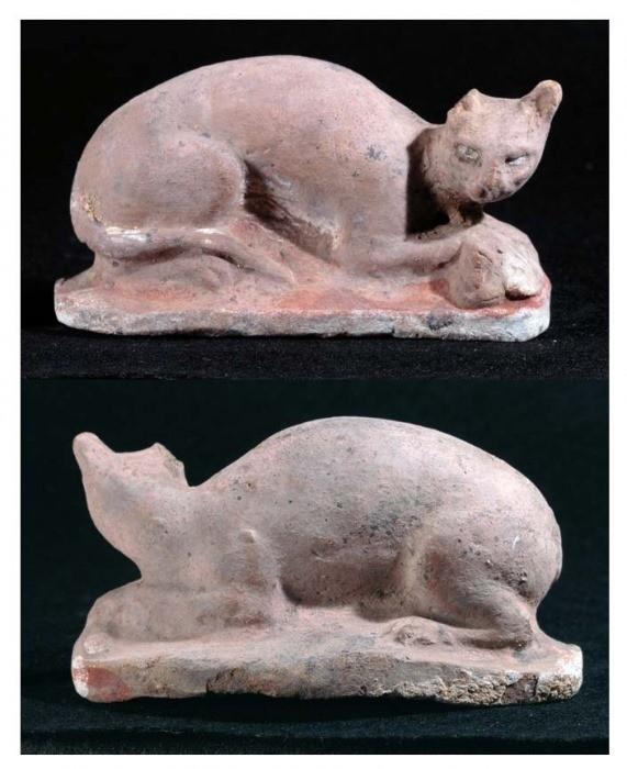 chats allongés sur une base, la tête tournée vers le spectateur
