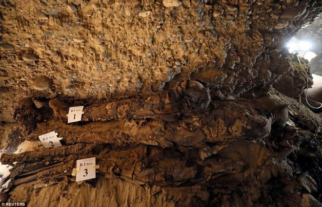 A number of mummies are pictured inside the burial site.