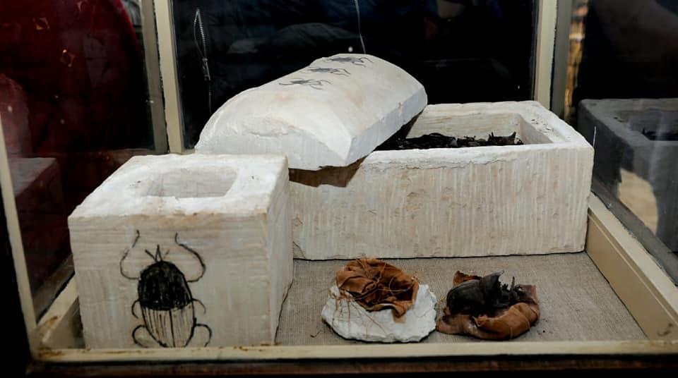 Scarabée momifié. Saqqara le 10/11/2018