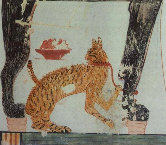 A domestic cat from a painting  in the tombe of May.