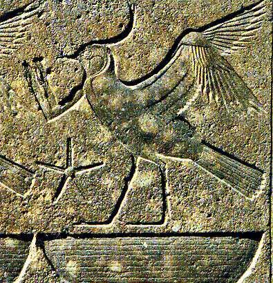 Le peuple en adoration devant pharaon. L'oiseau (Vanneau)  Rekhyt !