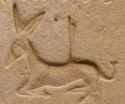 Âne hiéroglyphique.