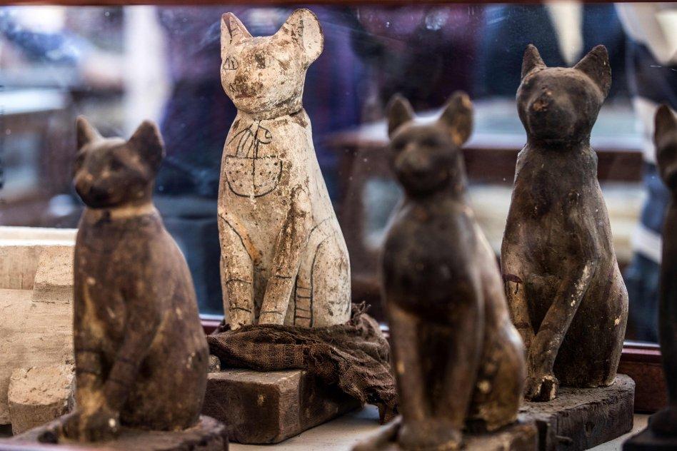Certaines des 75 figurines de chats trouvées dans l'entrepôt
