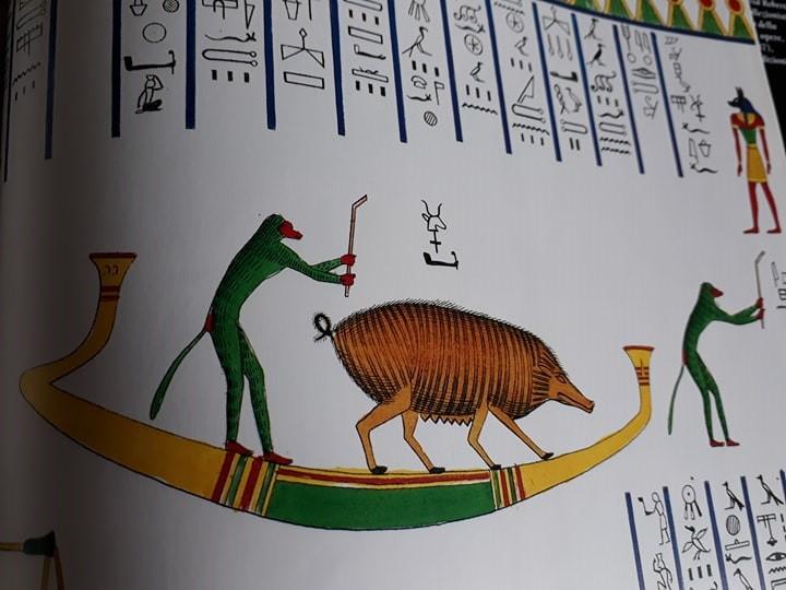 hedgehog from the Tomb of Knumhotep II_Gwyn Ashworth-Pratt