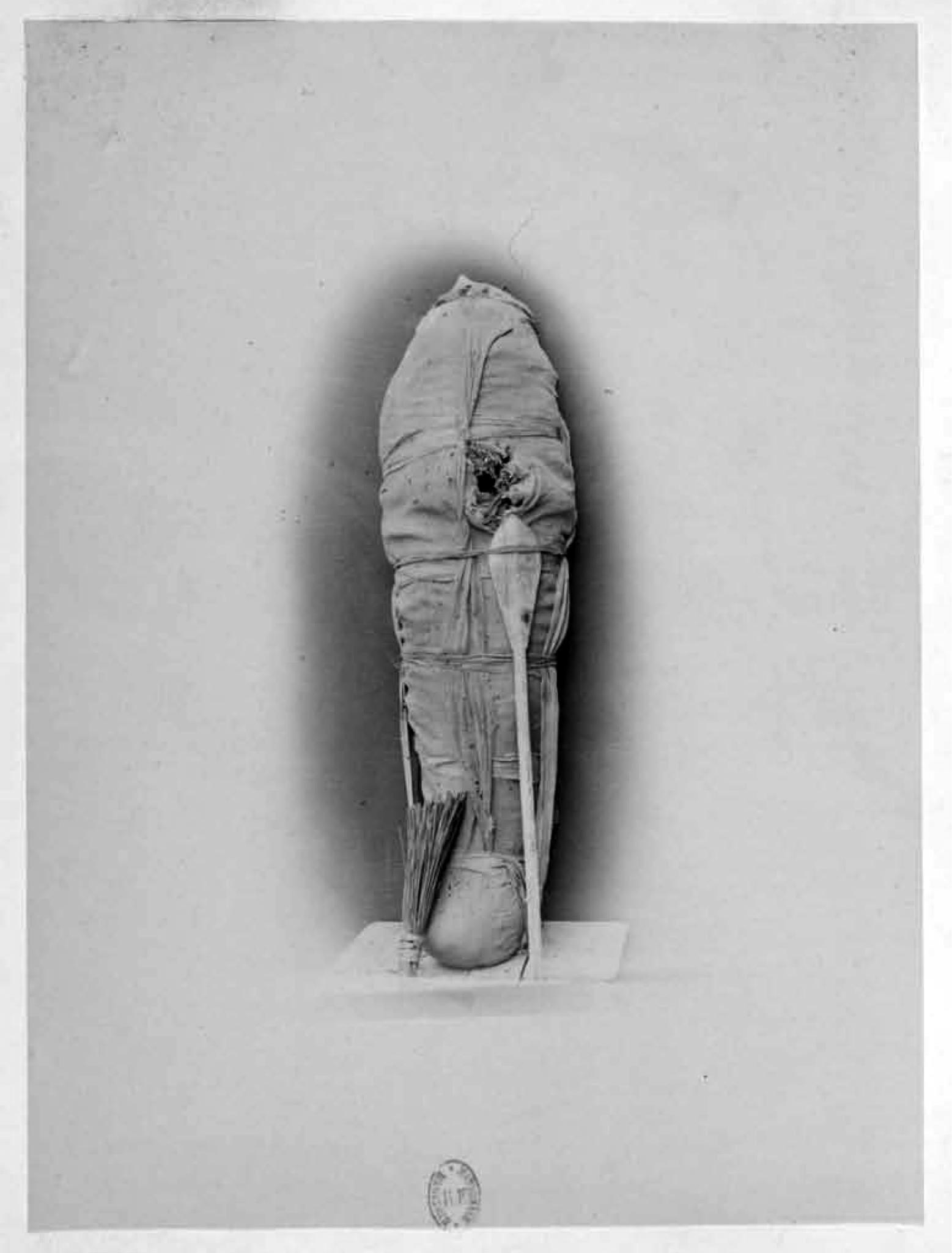 Mummy of thutmose III