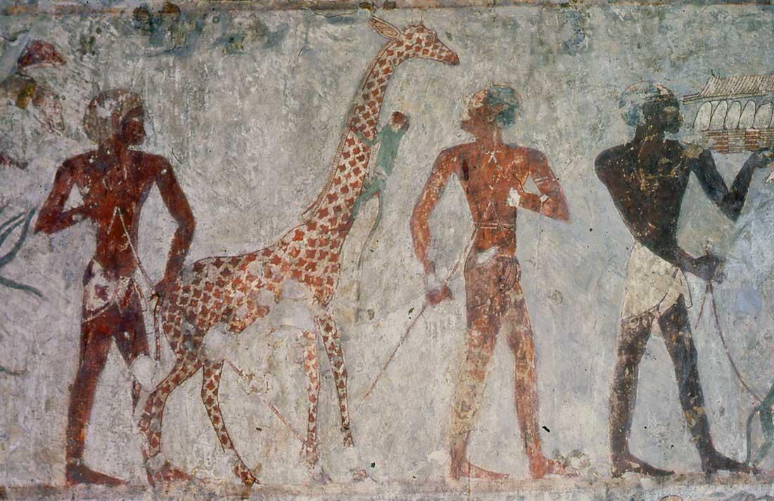 Original painting in the tomb Rekhmire, TT100 _ Prise de vue Francesca Berenguer