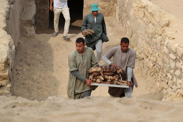 Site de Saqqara. Objets sortis de leurs hypogées.