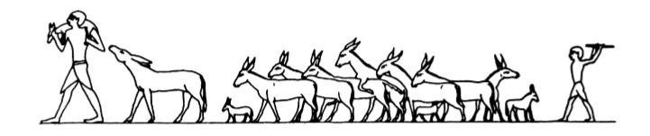 Troupeau d'ânes, tombe de Baqt à Beni-Hasan