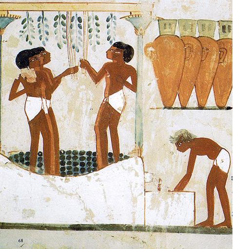 4260 vignette a tomb of nakht 13