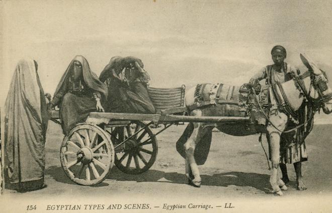 Attelage egyptien ed lehnert et landrock datee1914