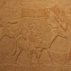 Surveillant des scribes des archives royales, Seshem-nefer