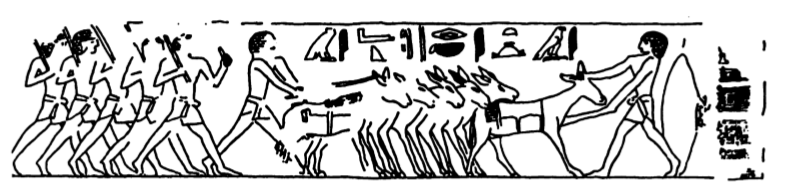 Chargement des anes mastaba de leyde