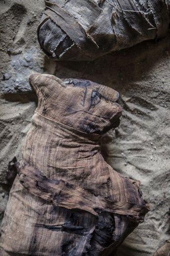 Modélisation, méthodes non invasives, sarcophage vieux de 2500 ans,  en Égypte ancienne.