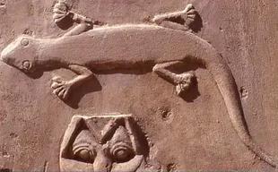 Karnak chapelle d amenhotep i genre ptyodactylus