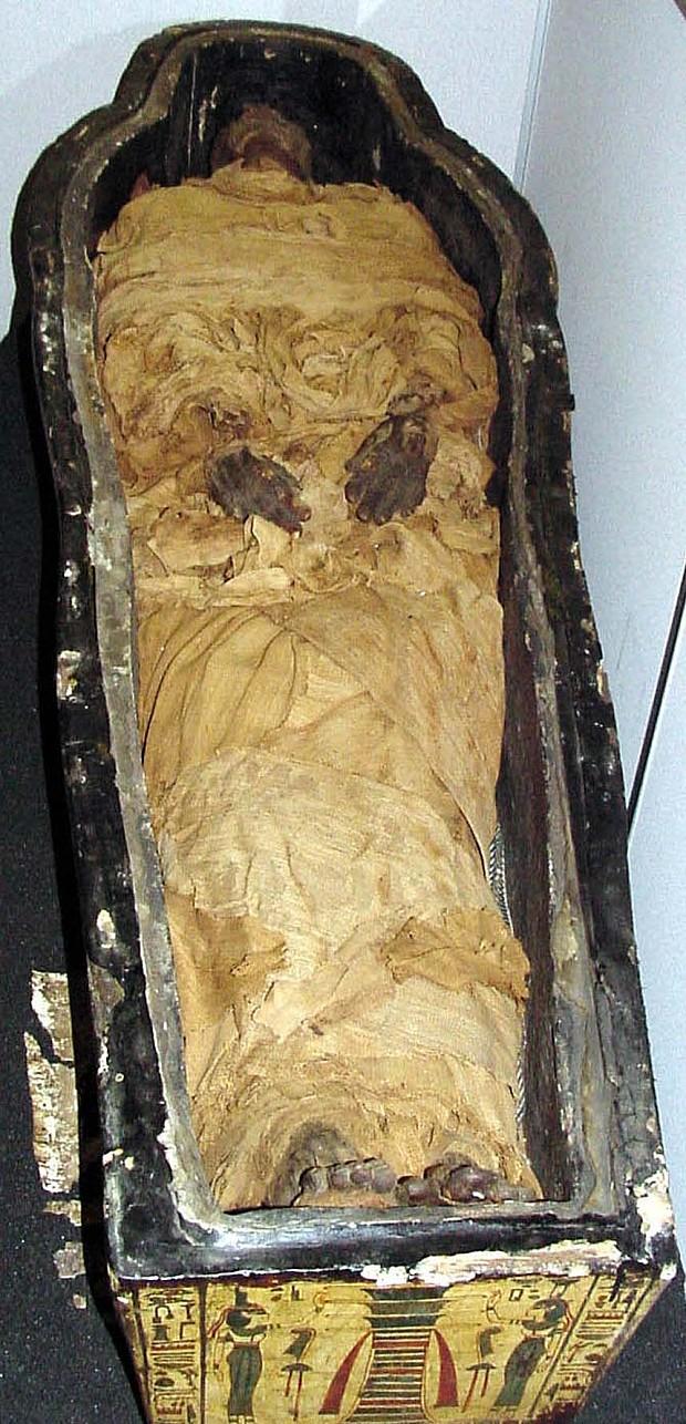 Mummy 3005548b copie