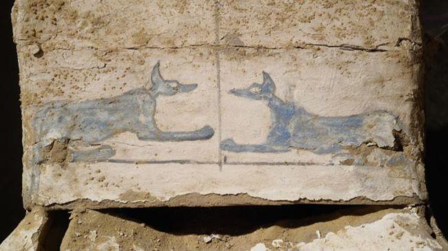 Netjer anubis j d browski polish centre of mediterranean archaeology