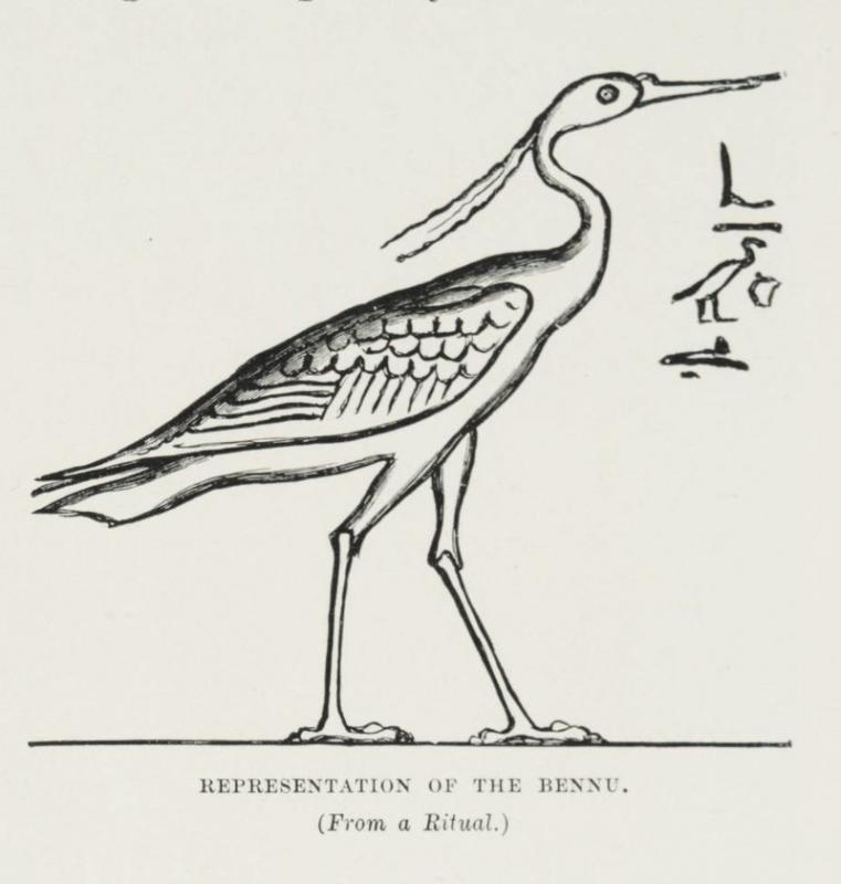 une representation du benou possiblement inspire par a bennuides