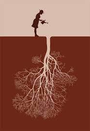 Un peuple ignorant de son histoire c est comme un arbre sans racines